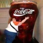 dietna kola
