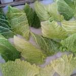 zeleninové čipsy z kelových listov